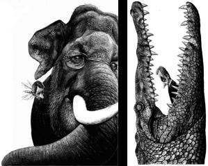 De políticos y otros animales muestra